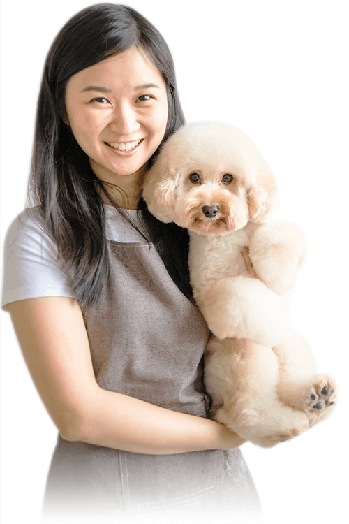 Picture of a young female student groomer holding a professionally groomed toy poodle